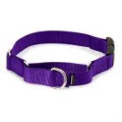 martingale snap buckle